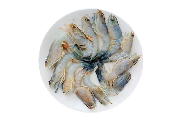 Gamberi freschi crudi sul piatto in ceramica bianco isolato su sfondo bianco