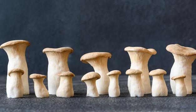 Funghi crudi dell'ostrica reale sulla superficie scura