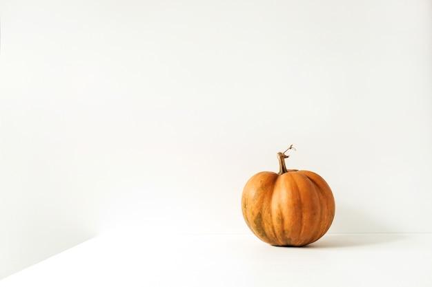 Zucca arancione cruda dello zenzero su bianco.