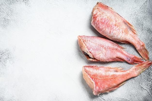 Pesce persico rosso crudo o dettagli di pesce spigola