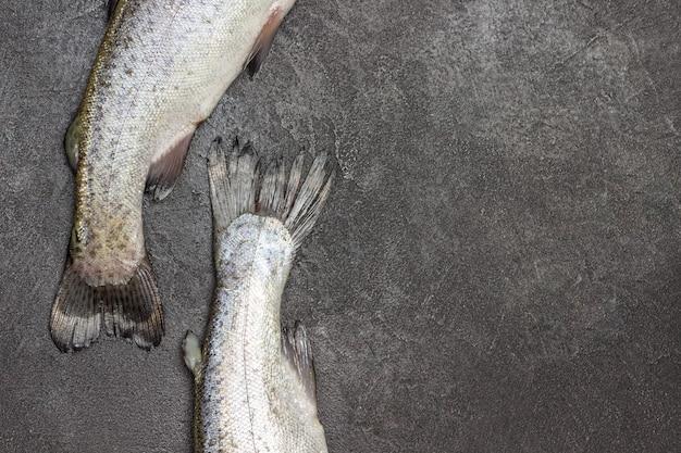 Code di pesce trota cruda sulla tavola grigia. copia spazio. lay piatto