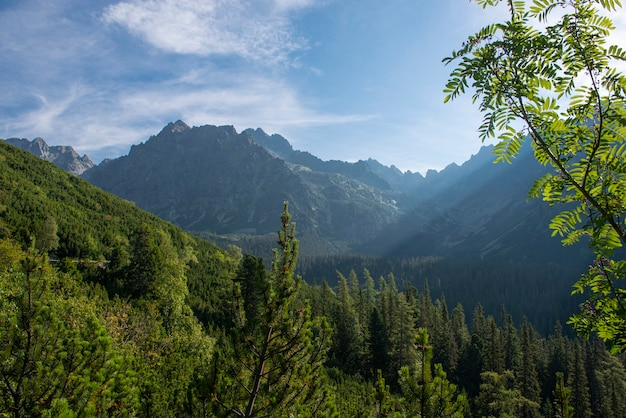 Raggi di sole in montagna al mattino