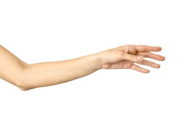 Raggiungere la mano gesturing della mano della donna isolato su bianco