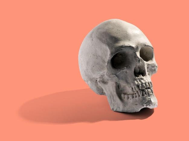 Modello realistico di un teschio umano con denti angolati di lato con un'ombra su uno sfondo arancione
