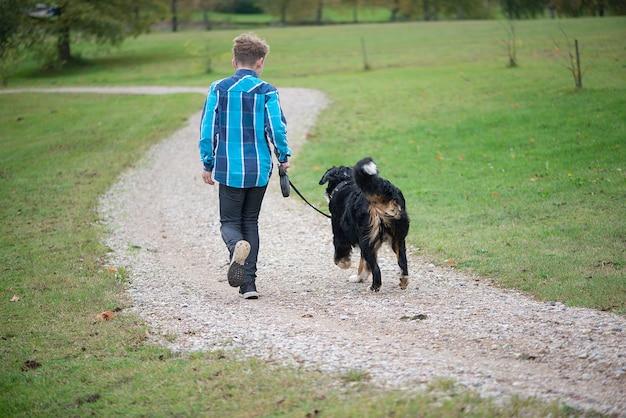 Vista posteriore del ragazzo che cammina con il bovaro del bernese. amicizia dell'adolescente con l'animale domestico.