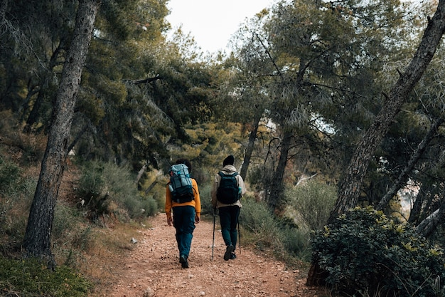 Retrovisione di una viandante che cammina sulla traccia nella foresta