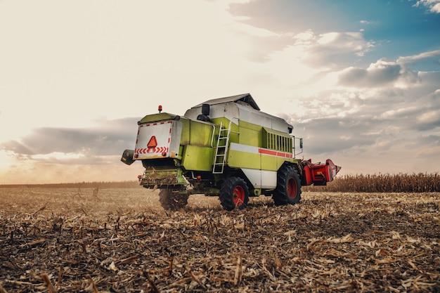 Vista posteriore della moderna mietitrice sul campo di mais in autunno. concetto di allevamento.