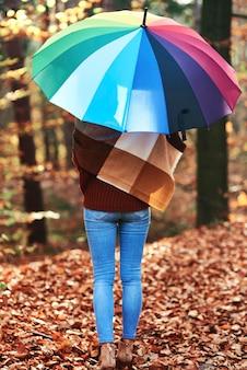 Vista posteriore giovane donna con ombrello nella foresta autunnale