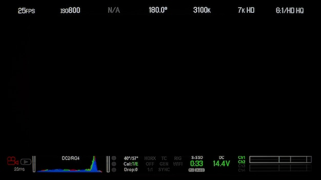 Registrazione della visualizzazione dello schermo del monitor e del testo delle informazioni dettagliate e isolate.