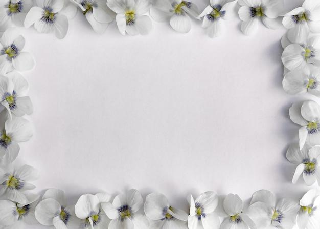 Cornice rettangolare di delicate violette su sfondo bianco