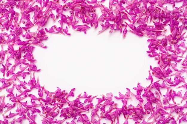 Cornice rettangolare di piccoli fiori primaverili rosa su sfondo bianco