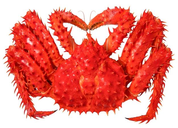 Red alaskan king crab isolato in uno sfondo bianco, norwegian taraba king crab su bianco (senza ombra)