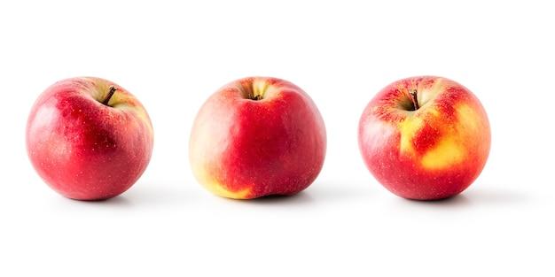 Raccolta di frutta mela rossa come banner creativo isolato su sfondo bianco. mangiare sano e stare a dieta concetto di cibo. composizione di frutta invernale ed elementi di design