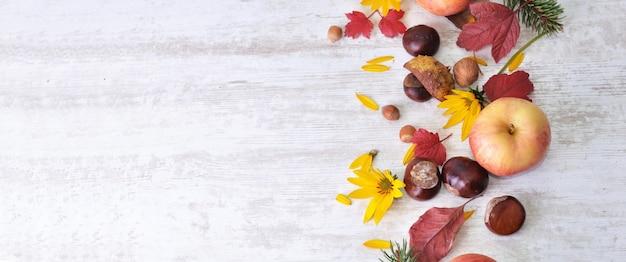 Mele rosse, marroni, fiori gialli con foglie in natura morta autunnale su bianco