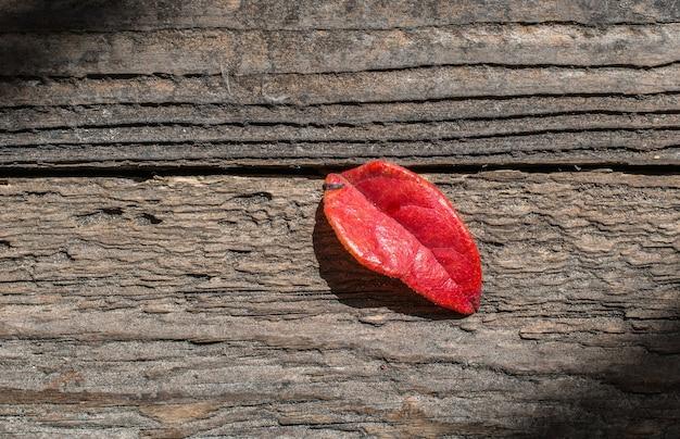 Foglia autunnale rossa su fondo in legno tema autunnale