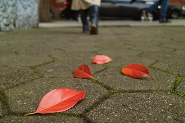 Foglie autunnali rosse cadute sul marciapiede con le gambe sfocate della donna che si allontanano