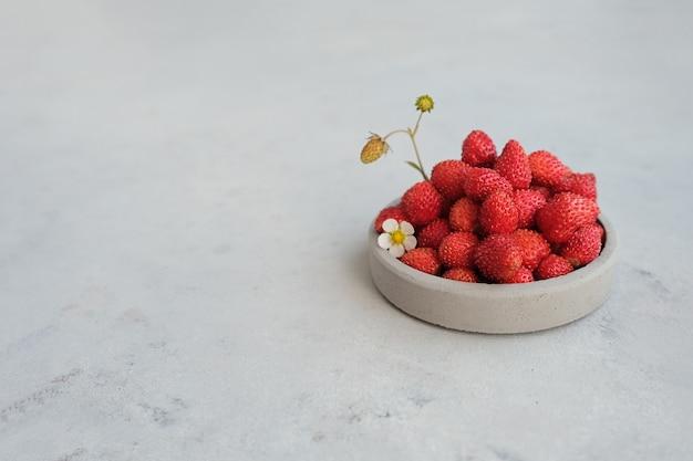 Bacche rosse di fragole su uno sfondo di cemento grigio. concetto estivo nel minimalismo. copia spazio
