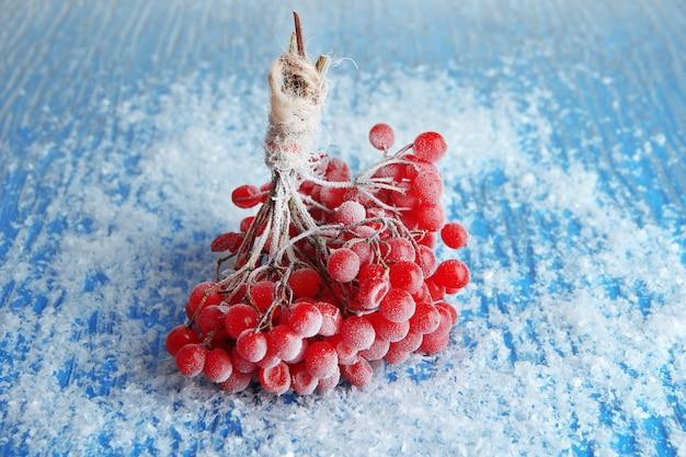 Bacche rosse di viburno con cristalli di ghiaccio, su sfondo blu