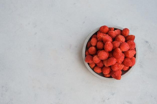 Bacche rosse di fragoline di bosco su uno sfondo di cemento. concetto estivo nel minimalismo. copia spazio