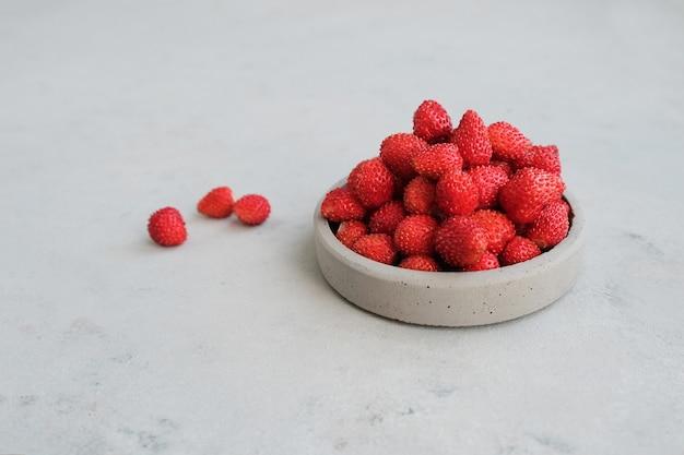 Bacche rosse di fragoline di bosco. concetto estivo nel minimalismo. copia spazio