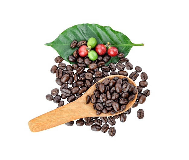 Chicchi di caffè rossi e neri su sfondo bianco