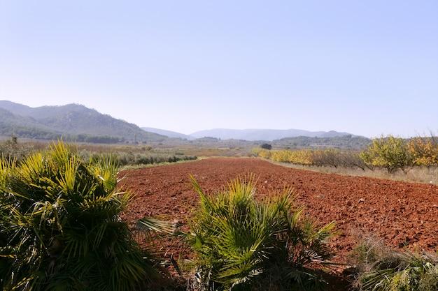 Struttura del terreno argilloso rosso su una mattina soleggiata