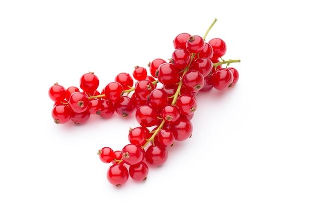 Ribes rosso ancora vita isolata su bianco