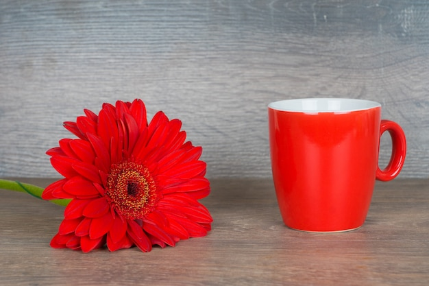 Gerbera rossa e tazza sulla tavola di legno
