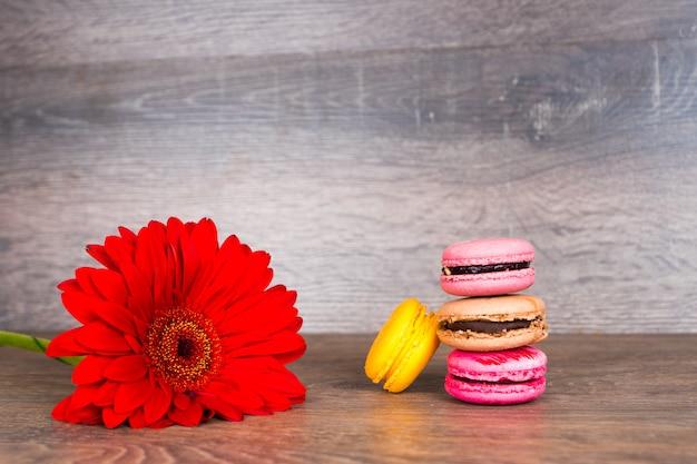 Fiore rosso della gerbera con amaretti sulla tavola di legno