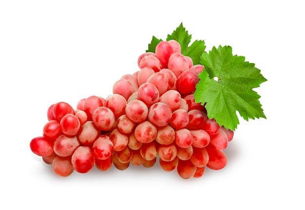 Frutto di uva rossa isolato su sfondo bianco