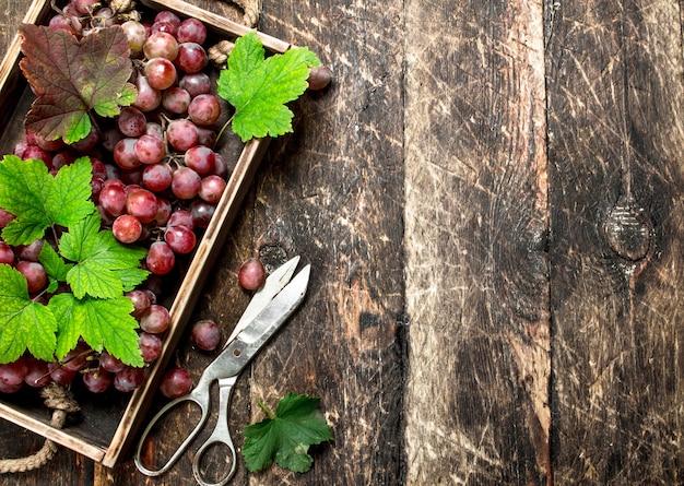 Uva rossa su un vecchio vassoio. su un tavolo di legno.