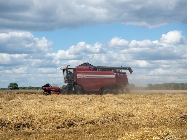 Mietitrice rossa nei raccolti del campo estivo. macchina agricola della mietitrebbiatrice per la raccolta del grano maturo dorato nel campo.