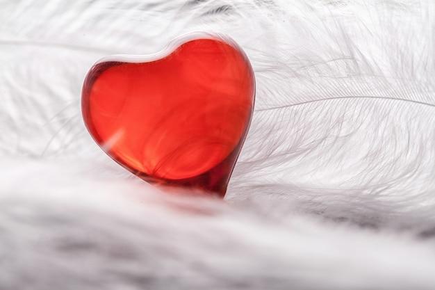 Cuore rosso su uno sfondo di piume bianche