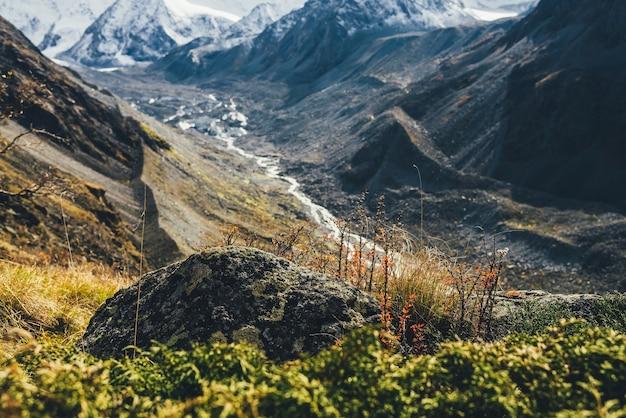 Foglie rosse di crespino spinoso sulla collina sullo sfondo di grandi montagne innevate e fiume di montagna splendente in bokeh nei colori autunnali al sole. bella pianta con spine e foglie rosse sulle rocce in autunno