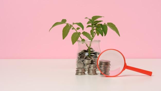 Lente d'ingrandimento rossa e monete bianche in un barattolo di vetro e sul tavolo, germoglio con foglie verdi. concetto di crescita del reddito, alta percentuale di investimento