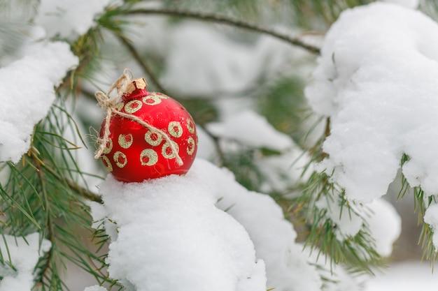 Giocattolo rosso del nuovo anno su un abete della neve