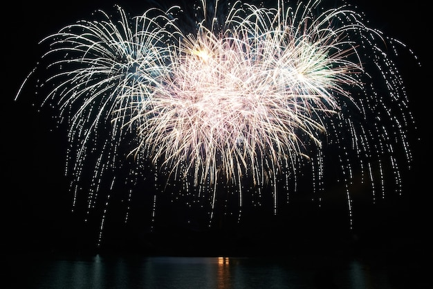 Fuochi d'artificio colorati rossi e viola di festa sui precedenti del cielo nero.