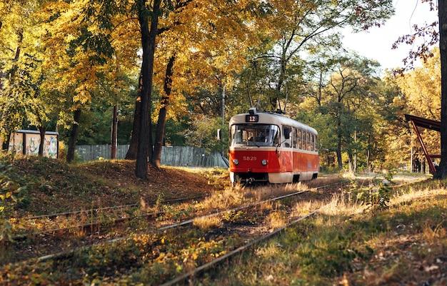 Il tram retrò rosso percorre il percorso attraverso la foresta autunnale. bellissimo paesaggio autunnale con tram.