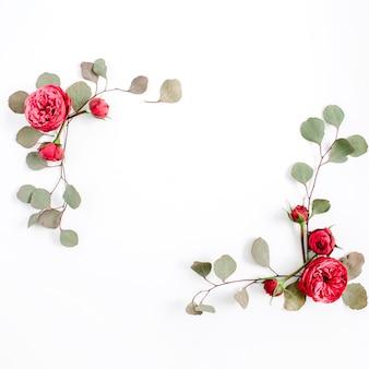 Boccioli di fiori di rosa rossa e rami di eucalipto isolati su sfondo bianco. disposizione piana, vista dall'alto. sfondo floreale