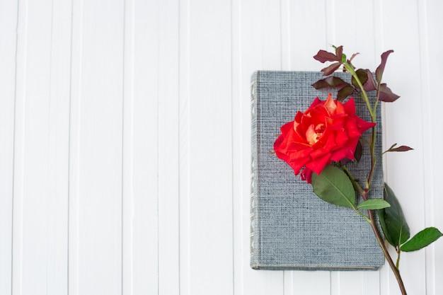 Fiore della rosa rossa sopra il libro aperto su fondo di legno bianco, romantico e amore.