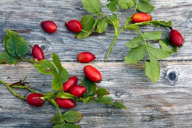 Cinorrodi rossi su un fondo di legno