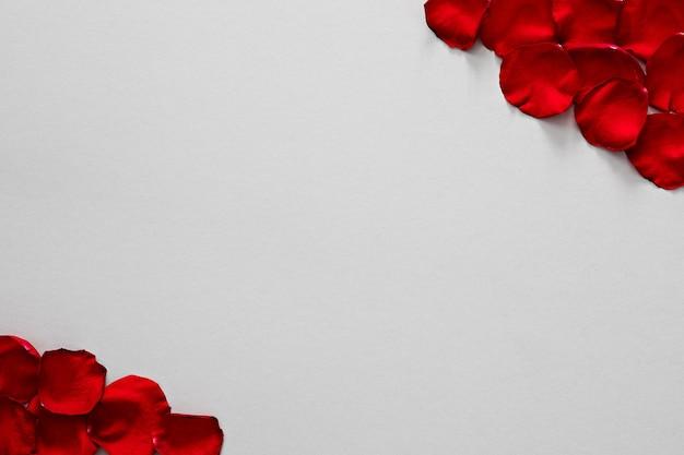 Petali di rosa rossi su struttura di carta grigia. sfondo di san valentino.