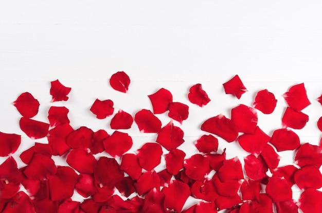 Petali di rosa rossi su legno bianco