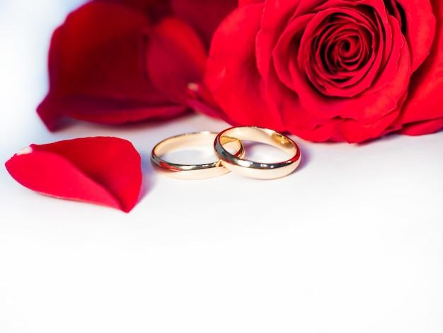 Rosa rossa, fedi nuziali e petali di rosa su sfondo bianco, con soft focus, per matrimoni, vacanze, anniversari, atmosfera romantica