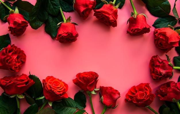 Rose rosse su una superficie rosa
