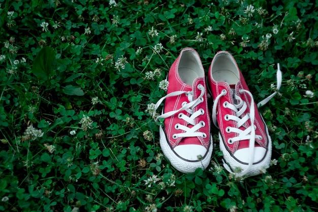 Scarpe da ginnastica rosse su erba verde nel parco.