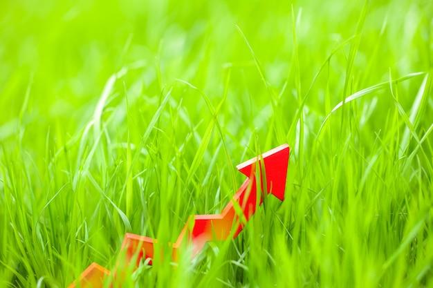 Freccia rossa nell'erba del prato inglese. copia spazio per il testo.