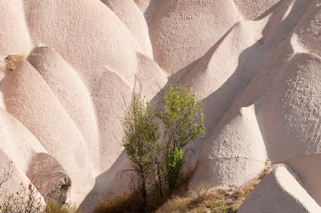 Valle rossa in cappadocia - nevsehir - turchia