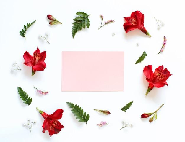 Fiori rossi e bianchi su una vista dall'alto di sfondo bianco