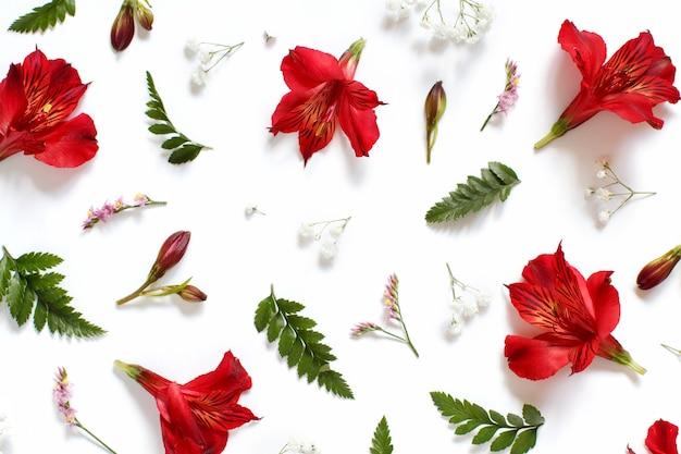 Fiori e foglie rossi, bianchi e rosa su una vista superiore del fondo bianco